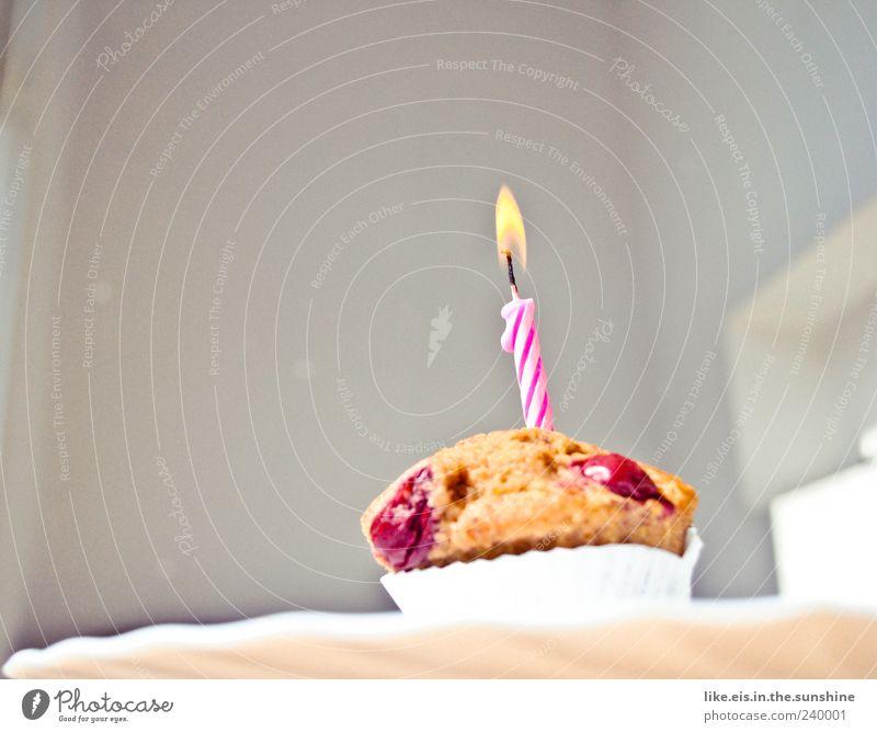 happy birthday! Kuchen Dessert Süßwaren Ernährung Duft klein lecker süß Fröhlichkeit Lebensfreude Muffin Geburtstagstorte Geburtstagsgeschenk Kerze weiß rosa