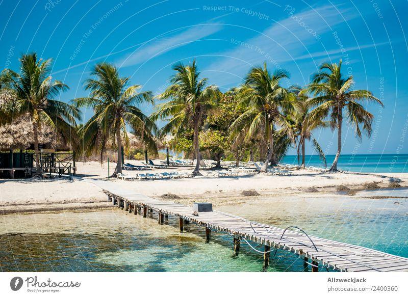 paradiesische Insel mit Palmen und Steg Tag Menschenleer Paradies Anlegestelle schön traumhaft Wasser Meer maritim Blauer Himmel Wolkenloser Himmel Sommer
