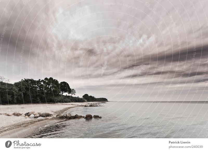 I won´t be found schön Strand Meer Umwelt Natur Landschaft Sand Wasser Himmel Wolken Wetter Wald Wellen Küste Ostsee entdecken Freiheit Horizont Idylle Stimmung
