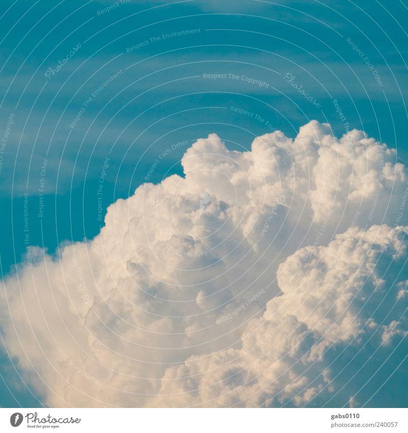 da braut sich was zusammen... Himmel Natur blau weiß Sommer Wolken ruhig Umwelt Freiheit Luft Wetter Klima Schönes Wetter Wolkenbild Wolkenberg
