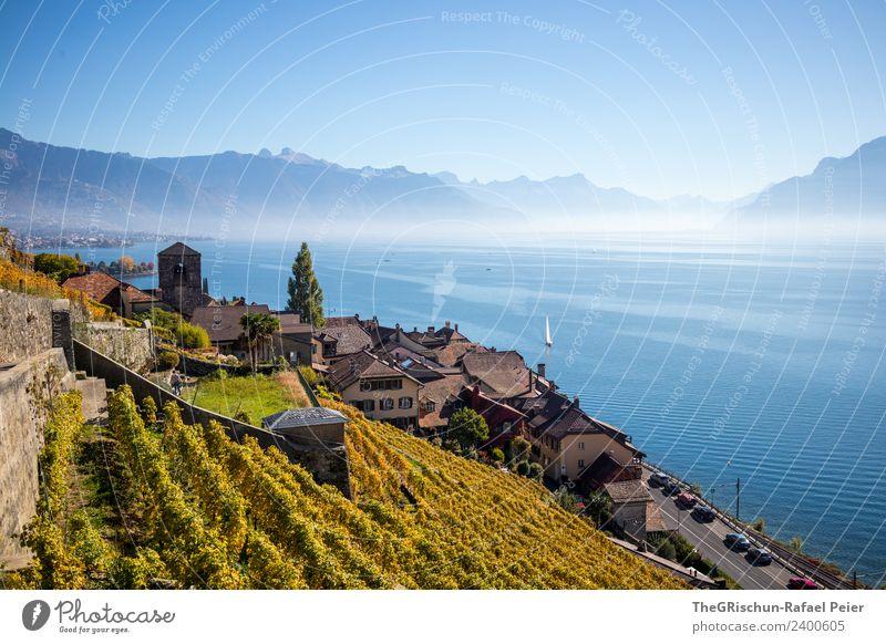 Dorf am See Umwelt Natur blau braun gelb gold schwarz weiß Genfer See Haus Weinbau Weintrauben Wasser Schweiz Landschaft Berge u. Gebirge Aussicht Dunst Nebel