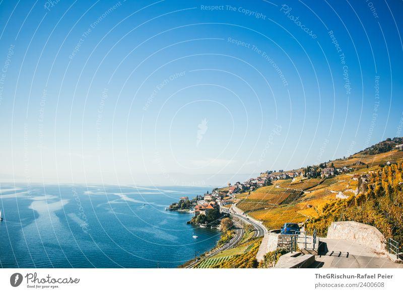 Weinberge Umwelt Natur Landschaft blau gelb gold See Strömung Blauer Himmel Straße Wasser Aussicht Genfer See Weltkulturerbe Schweiz Herbst niedlich mehrfarbig