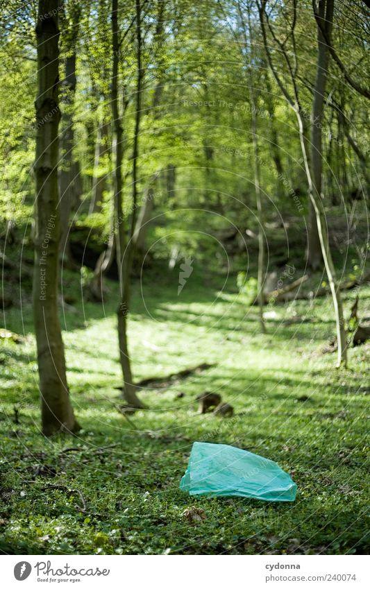 Vergessen I Natur Baum Wald Umwelt Landschaft Gras Zeit ästhetisch einzigartig Vergänglichkeit Müll entdecken vergessen Umweltverschmutzung Wert Plastiktüte