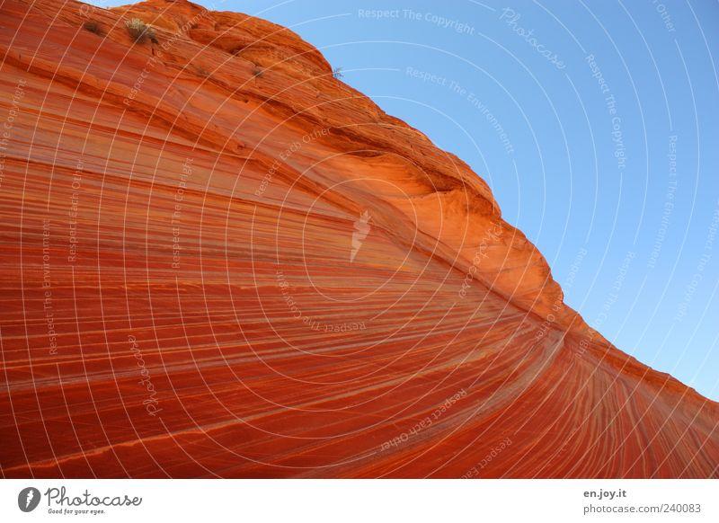 play of colors Himmel Natur blau Ferien & Urlaub & Reisen rot Farbe Landschaft Felsen Tourismus einzigartig USA Amerika bizarr Fernweh Utah Arizona