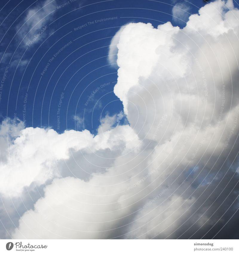 wolkenberge Himmel Natur weiß Sommer Wolken dunkel Luft hell Wetter Wind Klima Urelemente Gewitterwolken Wolkenhimmel Wolkendecke Wolkenformation