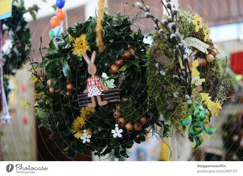 Osterkränze auf dem Ostermarkt schön Blume Freude Frühling Blüte Stimmung Dekoration & Verzierung Ostern Kultur Kitsch Blühend genießen Kranz Blumenkranz
