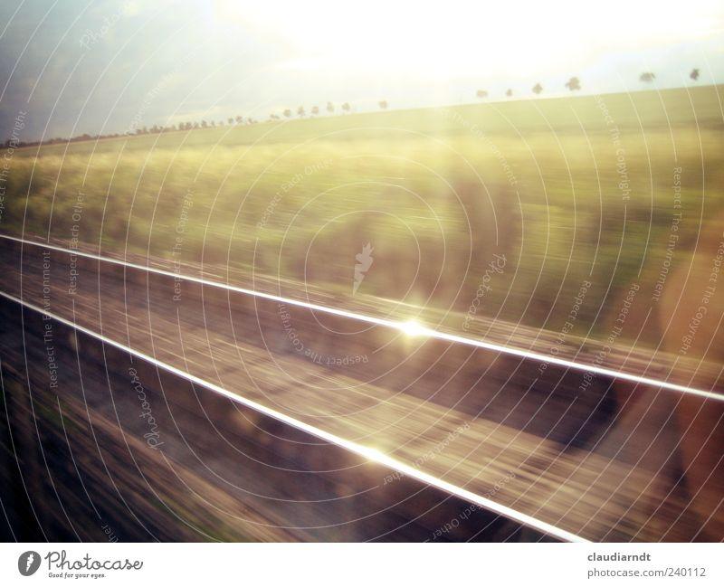 Heimweg Himmel Natur Ferien & Urlaub & Reisen Baum Sommer Ferne Landschaft Horizont Feld Geschwindigkeit fahren Gleise Verkehrswege Allee Verkehrsmittel Eisenbahn