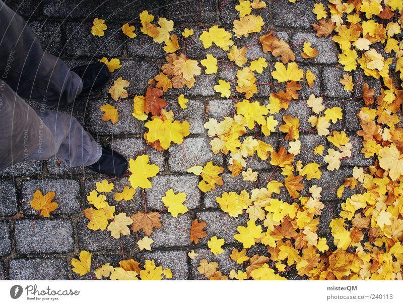 Just Yellow. ästhetisch Zufriedenheit Herbst Herbstlaub herbstlich Herbstfärbung Herbstbeginn Herbstwetter gelb Ahorn Farbfoto Gedeckte Farben Außenaufnahme