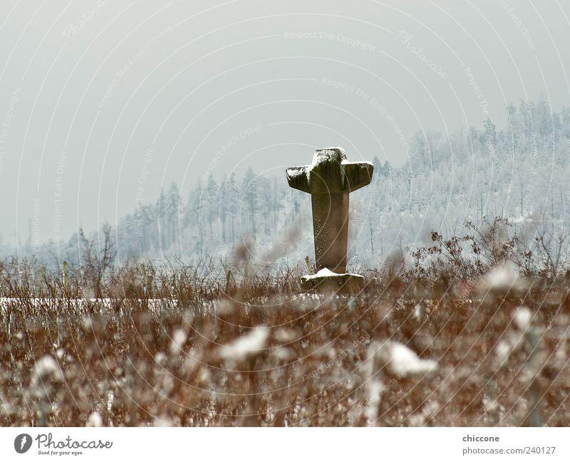 Kreuz aus Stein alt Landschaft Schnee Gefühle Religion & Glaube Sand Eis Kraft Feld ästhetisch Macht Frost Sträucher Hoffnung Kultur