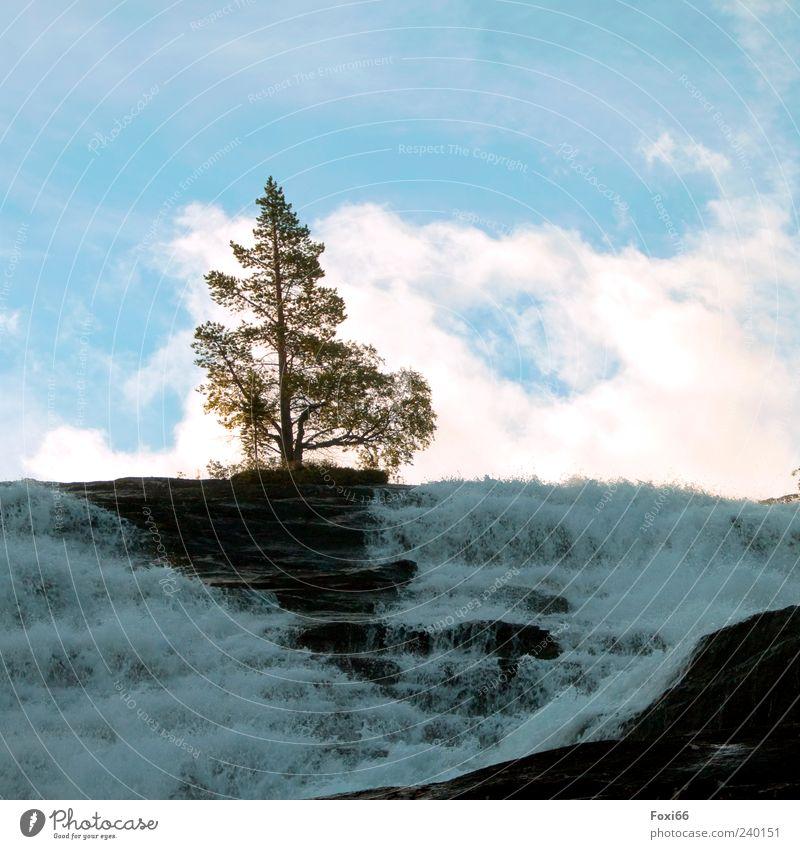 tosender Engel Luft Wasser Himmel Wolken Sommer Felsen Berge u. Gebirge Stein gigantisch hoch natürlich blau grün weiß Leben Außenaufnahme Textfreiraum oben