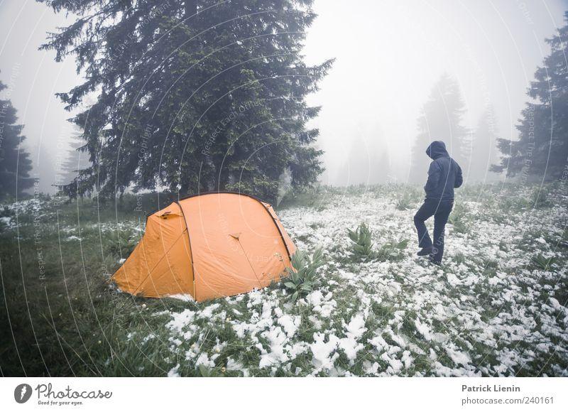 Draussen zuhause Mensch Natur Ferien & Urlaub & Reisen Baum Wald Umwelt Landschaft Wiese kalt Schnee Freiheit orange Wetter Wind Freizeit & Hobby Nebel