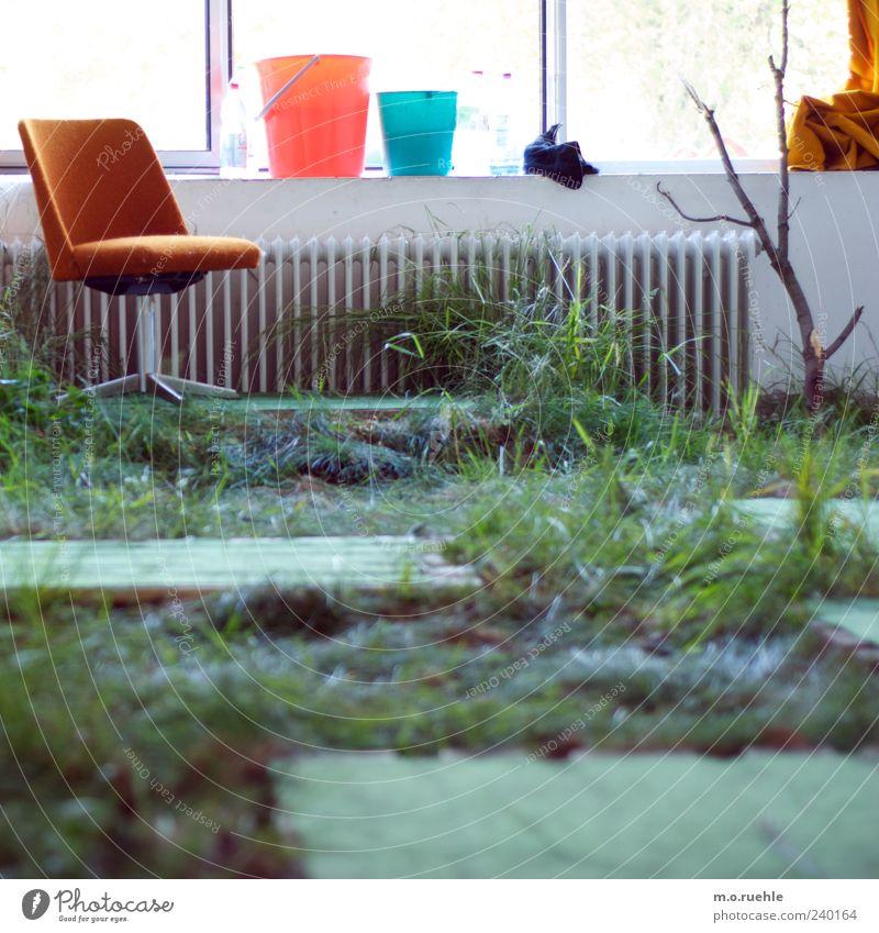 Wohnzimmer Weideland Lifestyle Wohnung einrichten Innenarchitektur Möbel Sessel Stuhl Raum ästhetisch einzigartig innovativ Gras Eimer Zweig verrückt Farbfoto