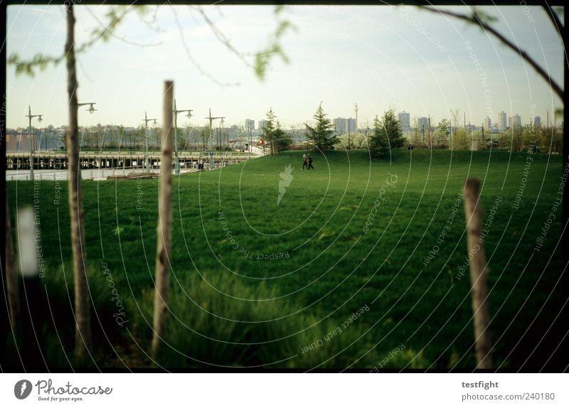 field of green Mensch Natur grün Stadt Baum ruhig Erholung Ferne Wiese Gras Park Zufriedenheit Pause Spaziergang Rasen Skyline