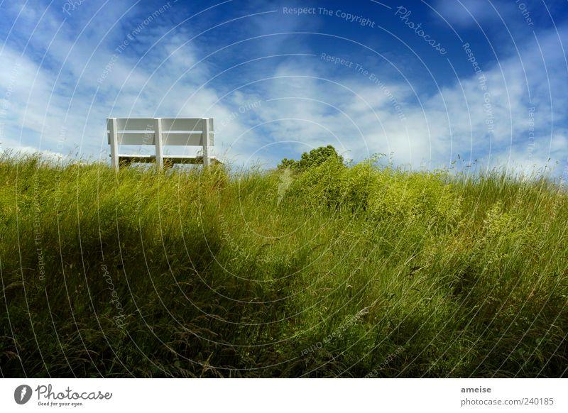 Deich Himmel Natur blau weiß grün Sommer Wolken ruhig Erholung Gras Wind Schönes Wetter Bank Hügel Parkbank