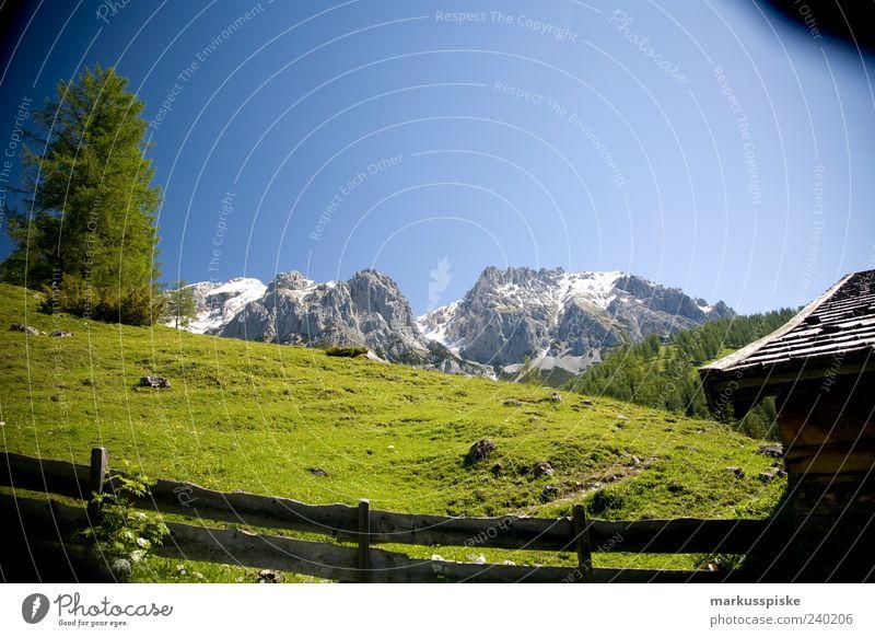 Berghütte mit Aussicht Ferien & Urlaub & Reisen Baum Pflanze Tier ruhig Ferne Landschaft Berge u. Gebirge Gras Freiheit Felsen Alpen Idylle Gipfel Hügel Schneebedeckte Gipfel