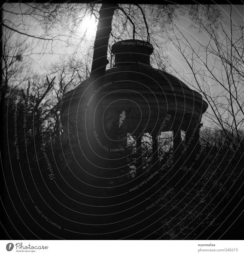 black park Natur alt Ferien & Urlaub & Reisen Baum Umwelt dunkel Architektur Garten Gebäude Kunst Park Stimmung Freizeit & Hobby Ausflug Tourismus ästhetisch
