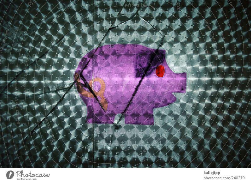 scherben bringen glück Tier Glück rosa außergewöhnlich kaputt violett Riss Etikett Schwein Scherbe Lichtbrechung Spardose Glücksbringer Glücksschwein