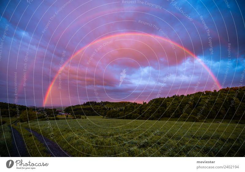 Regenbogenland Umwelt Natur Landschaft Luft Wassertropfen Himmel Gewitterwolken Sonnenaufgang Sonnenuntergang Sonnenlicht Frühling Schönes Wetter Gras Feld Wald