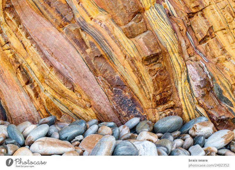 Sedimentäre Gesteinsstruktur Strand Meer Tapete Bildung Wissenschaften Geologie Beruf Geologen Umwelt Natur Erde Felsen Küste Sehenswürdigkeit Stein natürlich