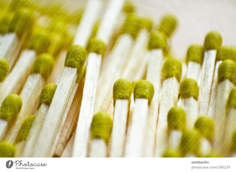 Streichhölzer Holz außergewöhnlich viele Streichholz Makroaufnahme hellgrün Vor hellem Hintergrund