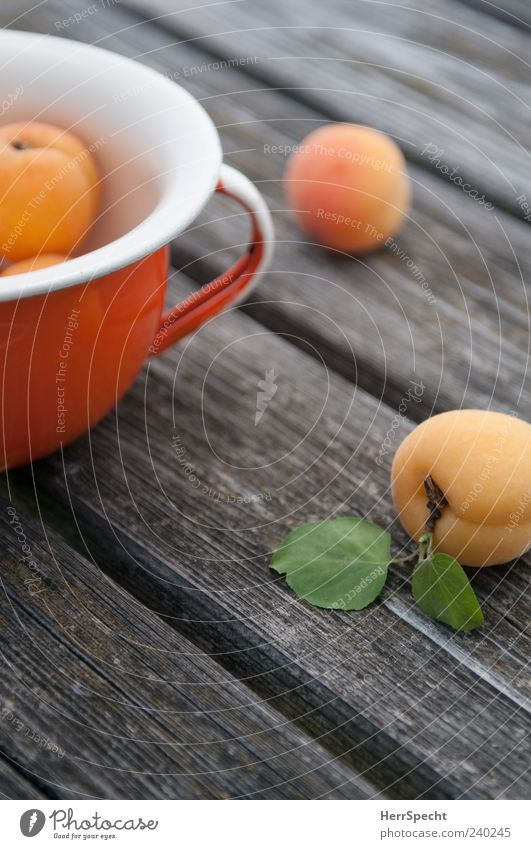 Marillen Frucht Aprikose marille Schalen & Schüsseln Topf Holz ästhetisch grün Holztisch reif frisch Farbfoto Außenaufnahme Schwache Tiefenschärfe orange liegen