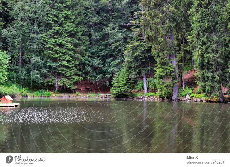 Enten haus am see natur ein lizenzfreies stock foto for Urlaub haus am see