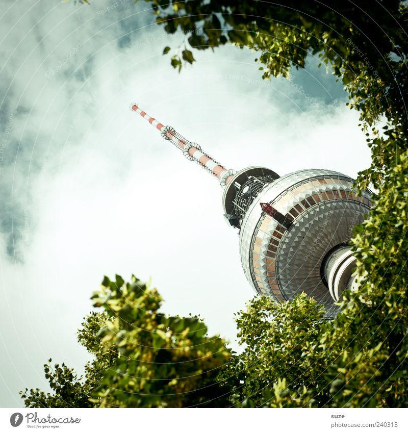 Baumspitz Kultur Umwelt Himmel Wolken Wetter Blatt Hauptstadt Turm Bauwerk Sehenswürdigkeit Wahrzeichen grün Tourismus Berlin Deutschland Europa