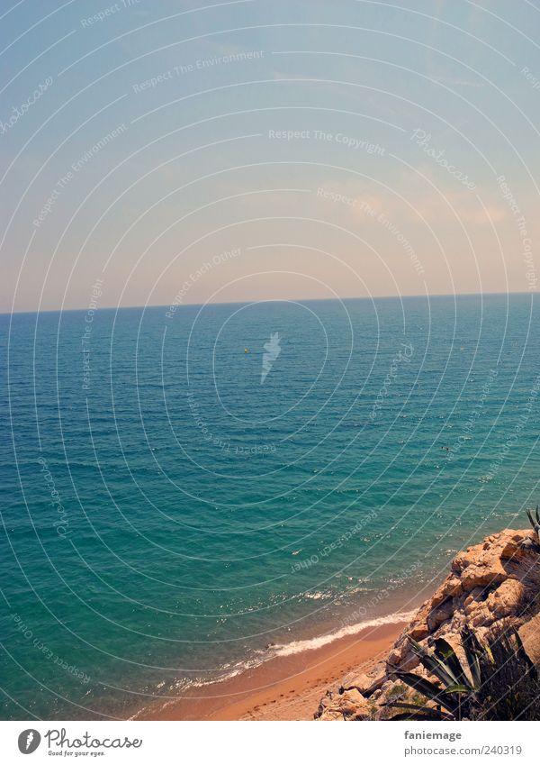 türkisblau! Umwelt Natur Sand Wasser Himmel Wolkenloser Himmel Sommer Schönes Wetter Kaktus Wellen Küste Strand Meer braun grün Urlaubsfoto
