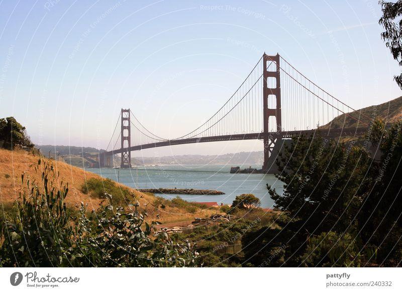 the one! Wasser Sommer Meer Landschaft Architektur Küste Tourismus authentisch Brücke Unendlichkeit fantastisch historisch Postkarte Bucht Schifffahrt Kalifornien