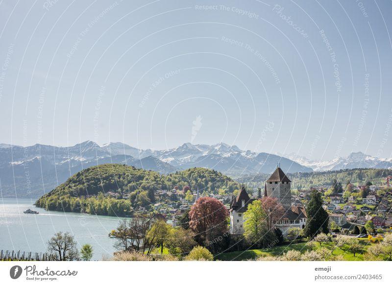 Spiez CH Umwelt Natur Landschaft Himmel Wolkenloser Himmel Frühling Sommer Schönes Wetter Berge u. Gebirge Kleinstadt Burg oder Schloss Sehenswürdigkeit