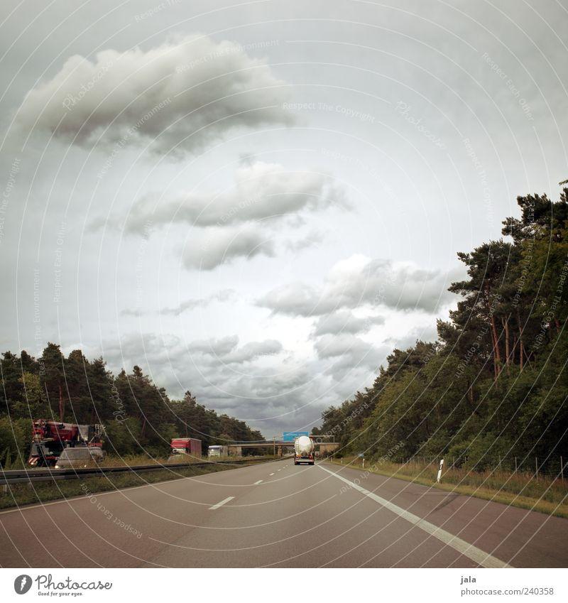 jala on tour Ausflug Natur Himmel Wolken Pflanze Baum Verkehr Verkehrsmittel Verkehrswege Personenverkehr Straßenverkehr Autofahren Autobahn Verkehrszeichen