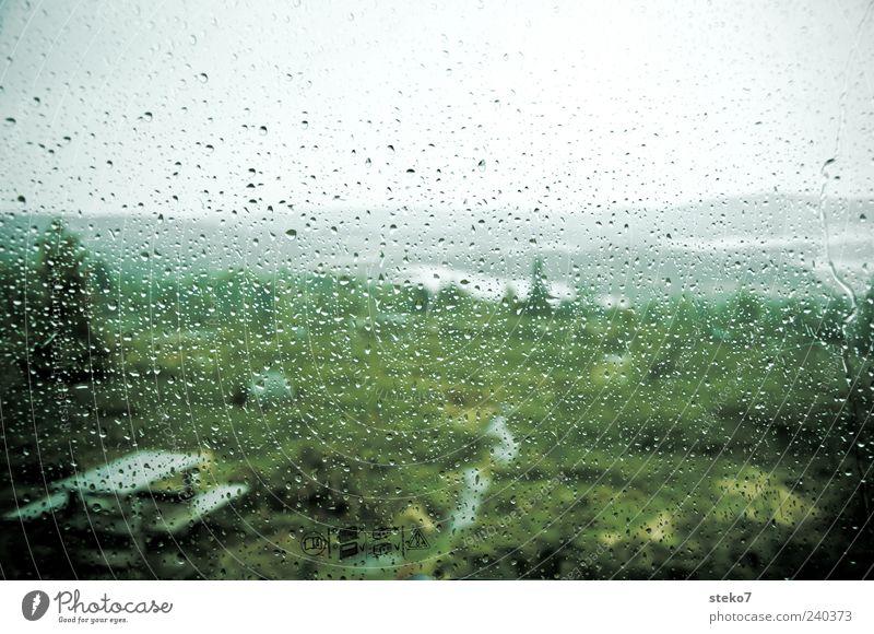 Wanderfrust Regen Wiese schlechtes Wetter Wege & Pfade Bank grau grün Farbfoto Außenaufnahme Nahaufnahme Menschenleer Schwache Tiefenschärfe Wassertropfen