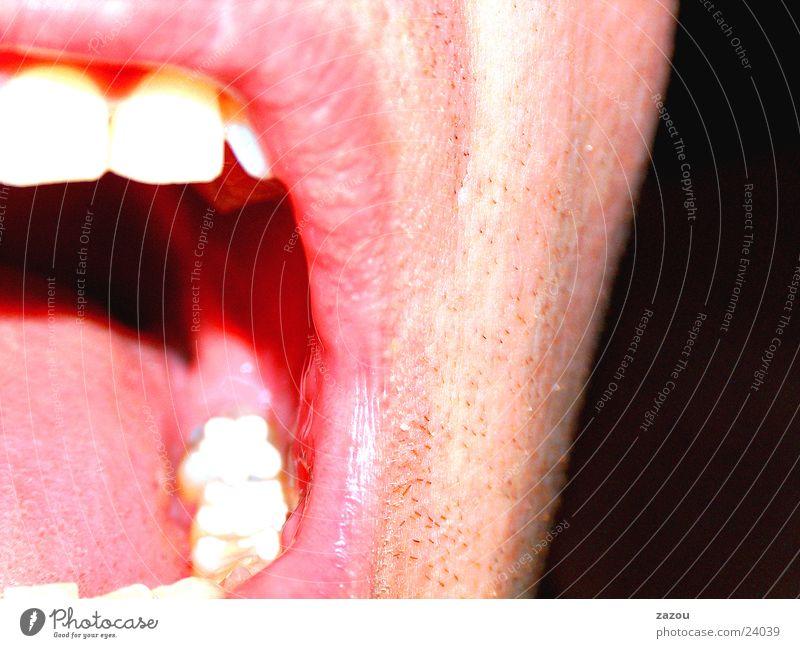 Shout! Lippen Makroaufnahme Nahaufnahme Mund Zunge Gesicht Mensch Zähne