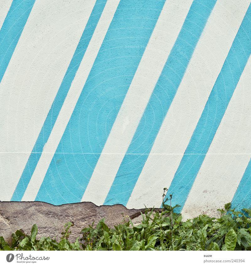 Skylines Gras Mauer Wand Linie Streifen kaputt blau weiß diagonal Steinwand Putz Zahn der Zeit Farbfoto mehrfarbig Außenaufnahme Muster Strukturen & Formen
