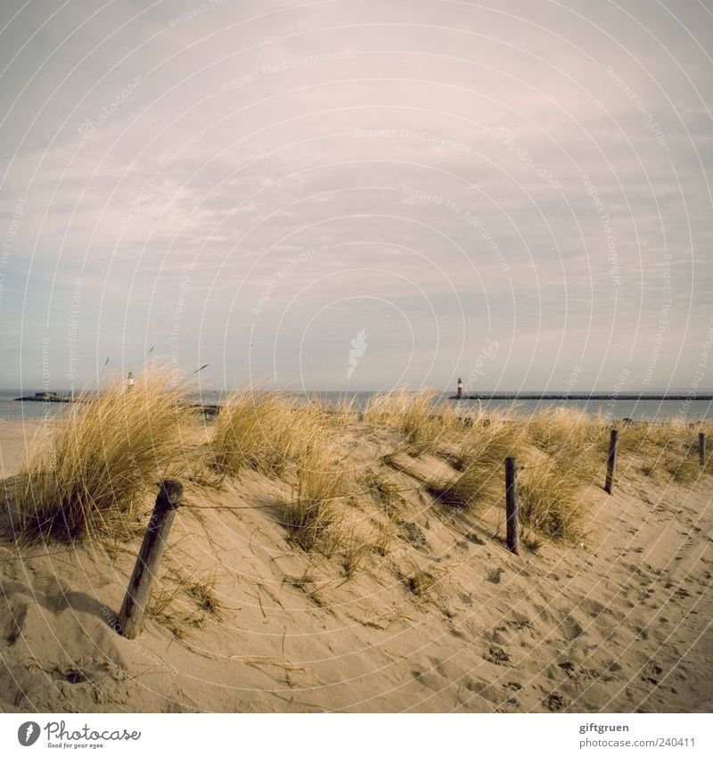 early summer days Himmel Natur Wasser Pflanze Sommer Meer Strand Wolken Umwelt Landschaft Küste Sand Deutschland natürlich Schönes Wetter Spuren
