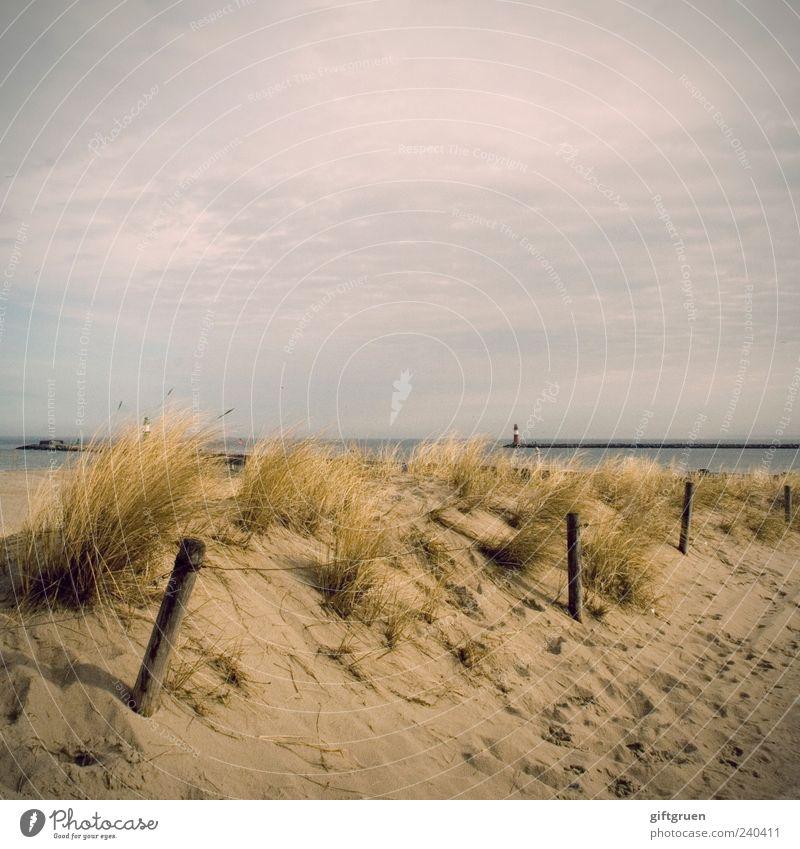 early summer days Umwelt Natur Landschaft Pflanze Sand Wasser Himmel Wolken Sommer Schönes Wetter Küste Strand Ostsee Meer natürlich Düne Stranddüne Dünengras