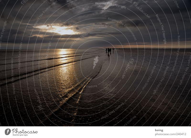Wattwanderung Ferien & Urlaub & Reisen Meer Strand Ferne Küste Menschengruppe Horizont Insel wandern Ausflug Tourismus Nordsee Sommerurlaub Abenddämmerung