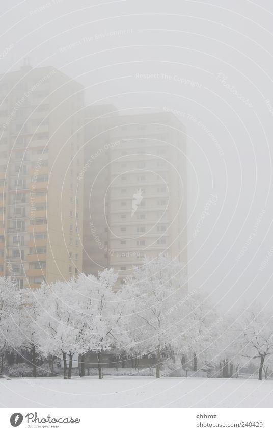 Hochaus im Nebel Eis Frost Schnee Baum Park Mainz Hochhaus Fassade Balkon Fenster fantastisch kalt gelb grau frieren Einsamkeit Klima stagnierend Traurigkeit