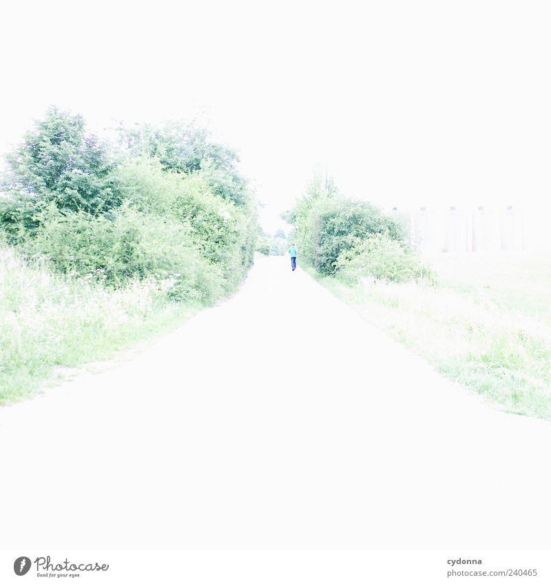 Davon laufen Natur Einsamkeit ruhig Erholung Ferne Umwelt Landschaft Straße Wiese Leben Bewegung Wege & Pfade Freiheit träumen hell Horizont