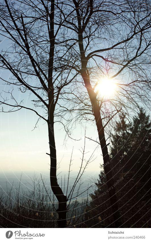 Teutonia Ausflug Ferne Freiheit Berge u. Gebirge Umwelt Natur Landschaft Luft Himmel Wolkenloser Himmel Horizont Herbst Klima Schönes Wetter Baum Sträucher Wald