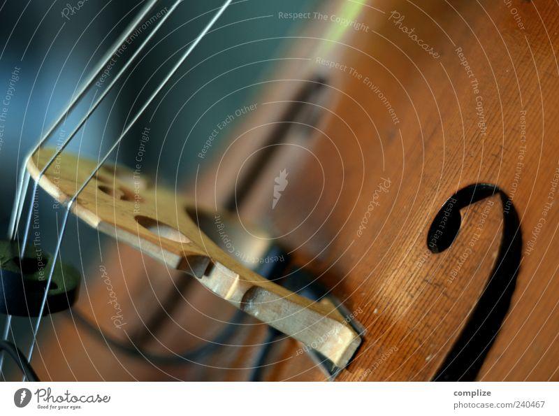 Streichinstrument Freizeit & Hobby Entertainment Musik Konzert Geige Cello Streichinstrumente Saite Saiteninstrumente Klassik Klassisches Konzert Farbfoto