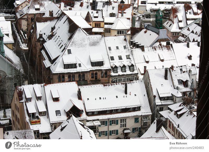 Schneedächer weiß Stadt Winter Haus Umwelt Fenster kalt oben Gebäude hoch frisch Häusliches Leben Dach Spitze Idylle
