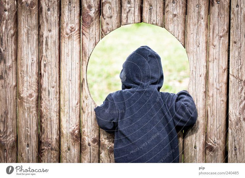 rundschau Mensch Kind Kleinkind Rücken 1 1-3 Jahre Spielplatz Pullover Kapuze Holz Blick Spielen blau Neugier Kindheit Loch Öffnung Holzbrett Bretterzaun