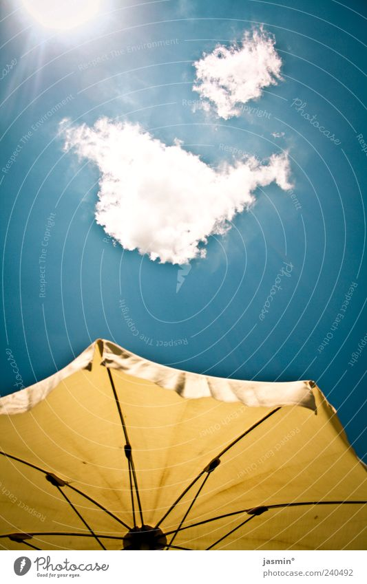 gut gehn lassen Himmel Sonne Sommer Wolken Umwelt Wetter Schönes Wetter Sommerurlaub Sonnenschirm Ferien & Urlaub & Reisen Wetterschutz Sonnenlicht himmelwärts Gegenlicht