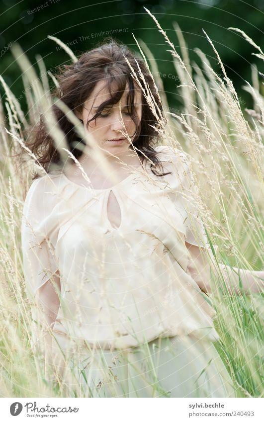 vom winde verweht Mensch Natur Jugendliche schön Pflanze Sommer ruhig Erwachsene feminin Leben Bewegung Gras Haare & Frisuren Stil Mode Stimmung