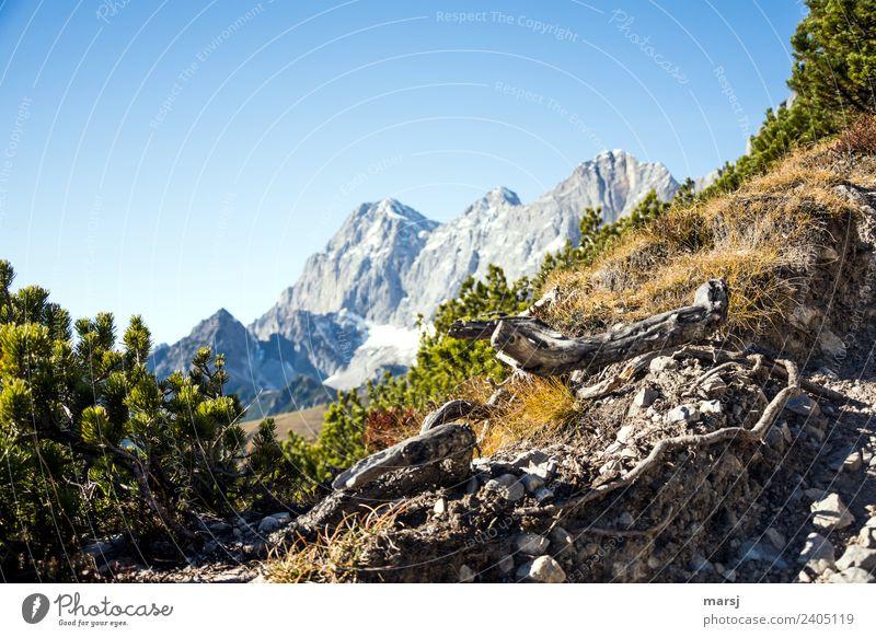 Jahreszeiten | Herbstzeit-Wanderzeit Natur Ferien & Urlaub & Reisen blau Landschaft Erholung Einsamkeit ruhig Berge u. Gebirge Tourismus Ausflug wandern