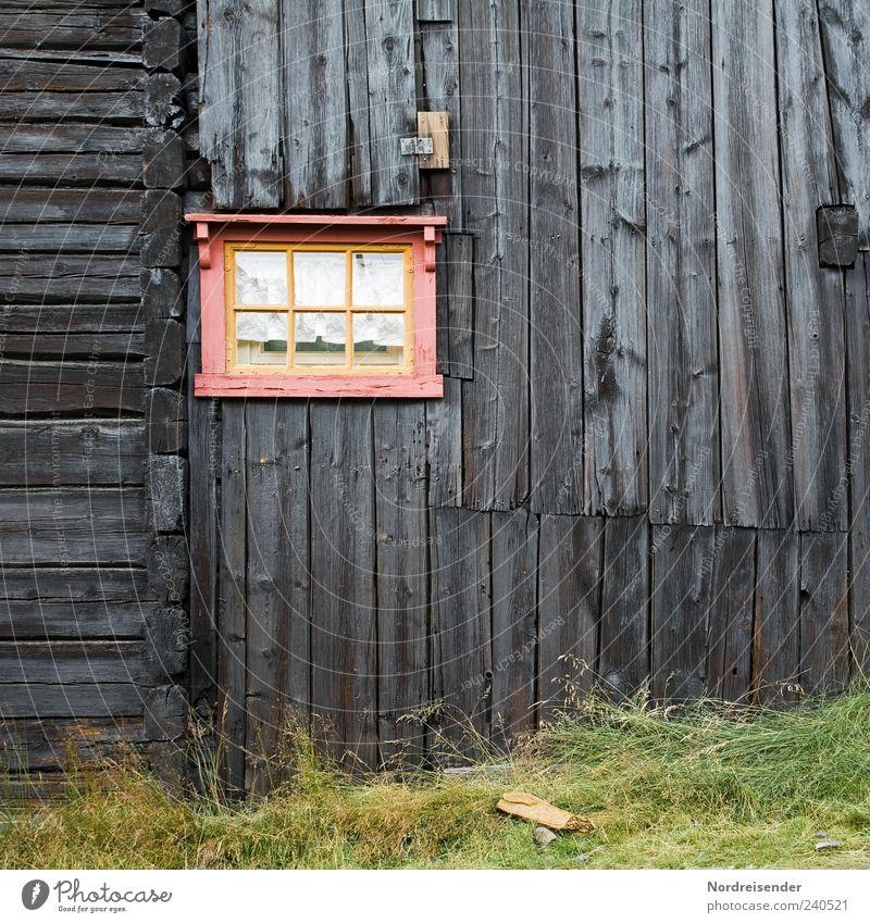 Altrosa alt Haus Fenster Gras Holz Architektur Linie Fassade außergewöhnlich Streifen Nostalgie altmodisch Holzhaus Holzhütte Holzfassade