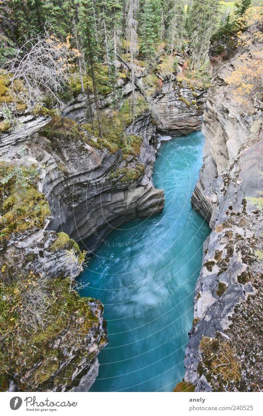 deep blue Expedition Schlucht Felsen Fluss blau Bach Kanada steil Stein grau wild Natur schön fließen beeindruckend Umwelt Landschaft Urelemente Wasser