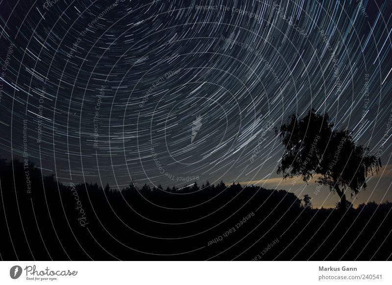 Nachthimmel Himmel Natur Baum schwarz Wald Landschaft Bewegung Linie Zeit Stern Kreis Spuren Weltall Mitte Frieden drehen