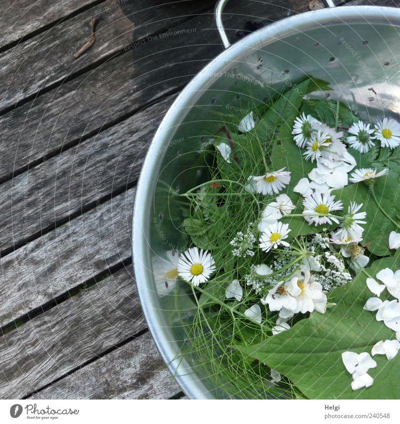 frische Kräuter und Blüten in einer Metallschüssel auf einem Holztisch Lebensmittel Salat Salatbeilage Kräuter & Gewürze Ernährung Bioprodukte